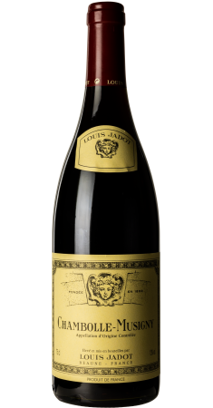 Louis Jadot - Chambolle Musigny Chambolle Musigny (Côte de Nuits) Rouge 2011